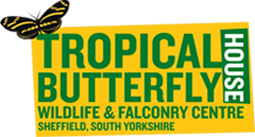 Tropical Butterfly House Promo Codes